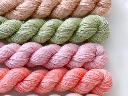 Coral Rainbow - Mini Skein Set.