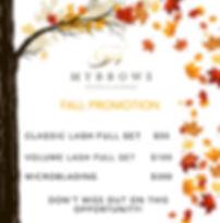 MYBROWS FALL PROMO 2.0.jpeg