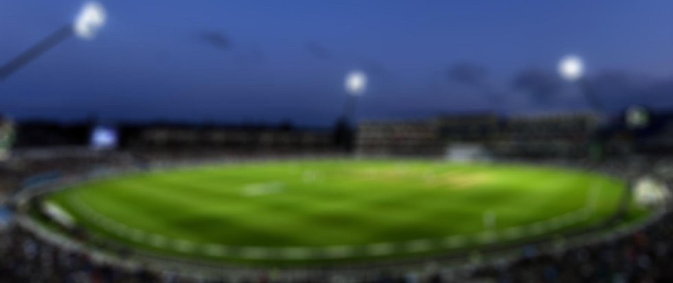 cricket blur.jpg