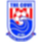 Cove FC logo.png