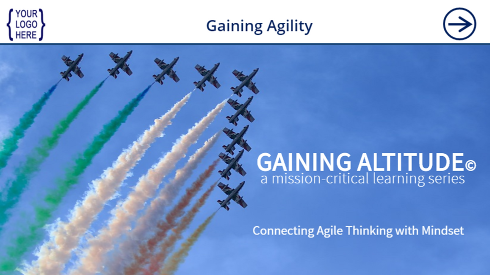 Gaining Agility eCourse