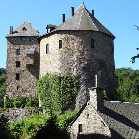 Het kasteel/museum kan bezocht worden na reservatie. http://www.reinhardstein.net/nl/