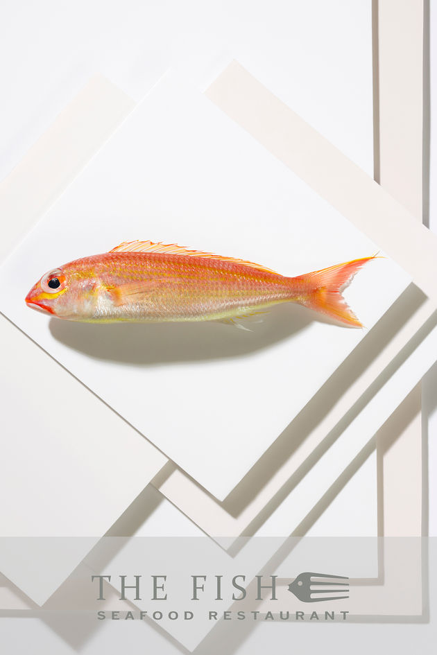 Fish restaurant poster 3 – Dubai local fish photographed on white mounting boards
