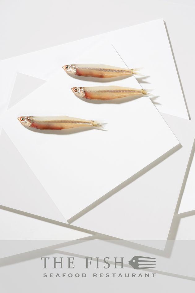 Fish restaurant poster 1 – Dubai local fish shot on white mounting boards