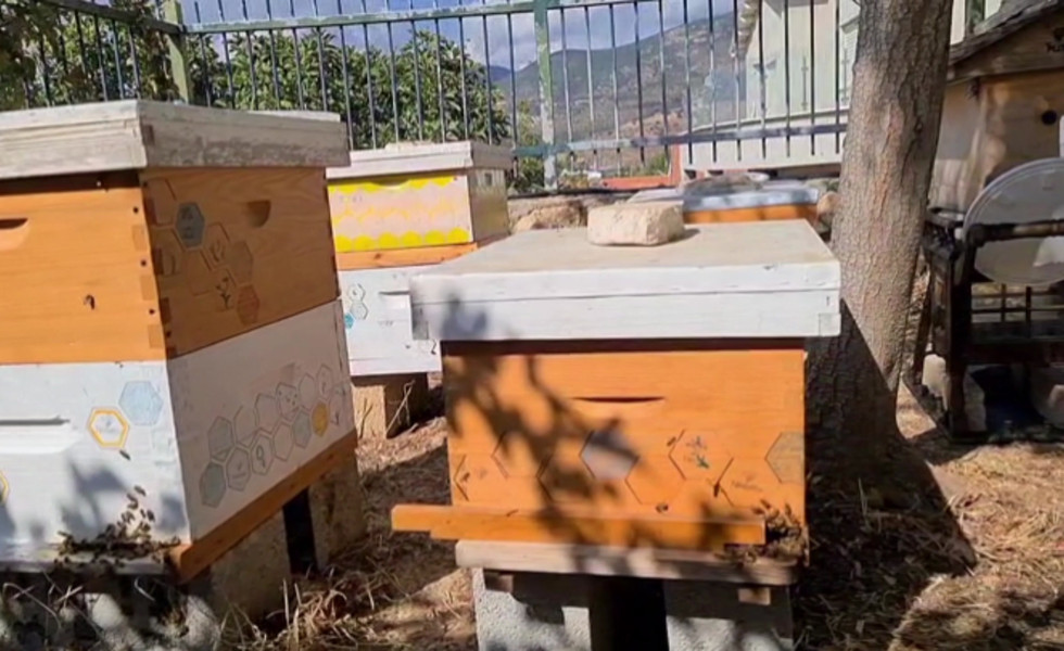 beehive sponsorship_1440p.mp4