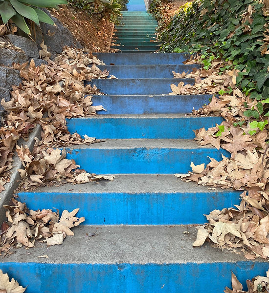 Blue steps with leaves
