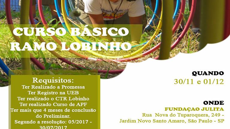 CURSO BÁSICO LOBINHO