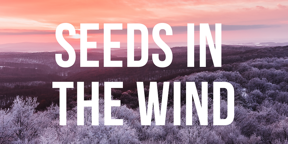 Seeds in the wind - Release 2020 & Invite 2021