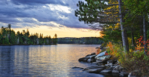 9 easy ways to get a beautiful shoreline and a healthy lake