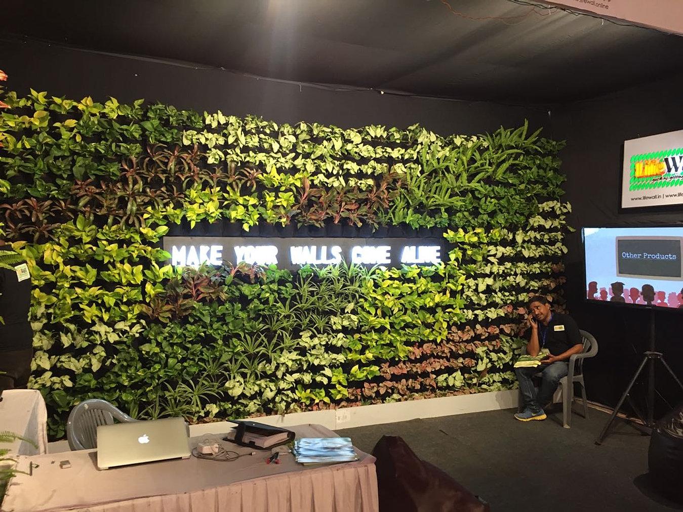 Vertical Garden  Green Wall Bareilly