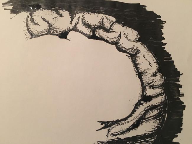 'Frontal Lobe' (2017)