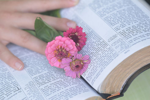 bible-4630661_1920.jpg