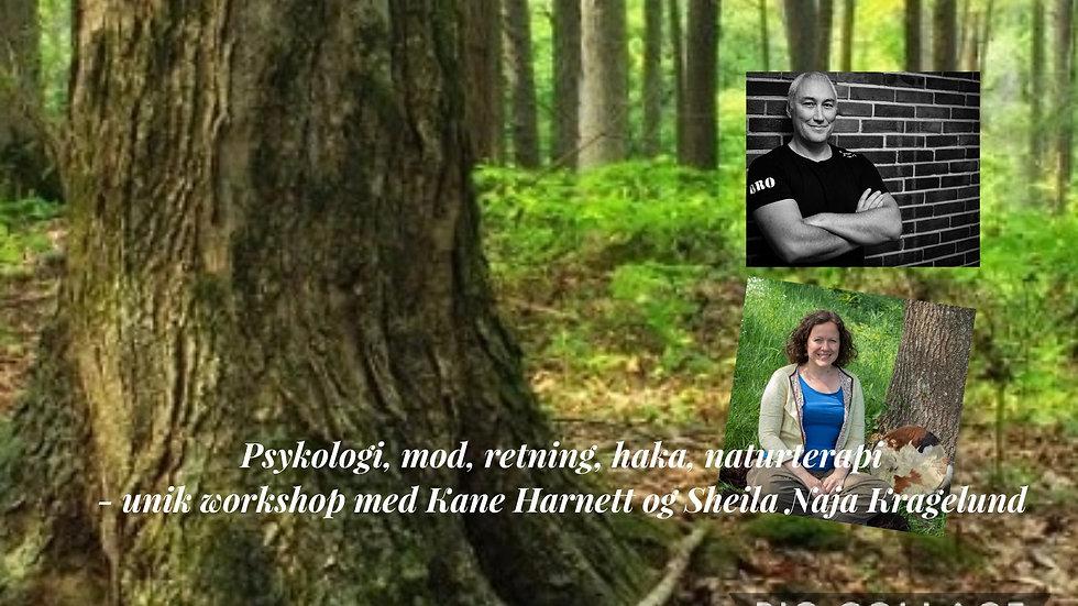 30. maj - MOD og retning -psykologi, haka og naturterapi
