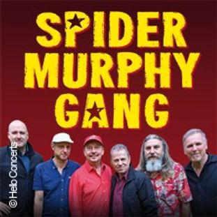 spider-murphy-gang---rock-n-roll-tour-ti