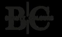 logo beauty colours.png