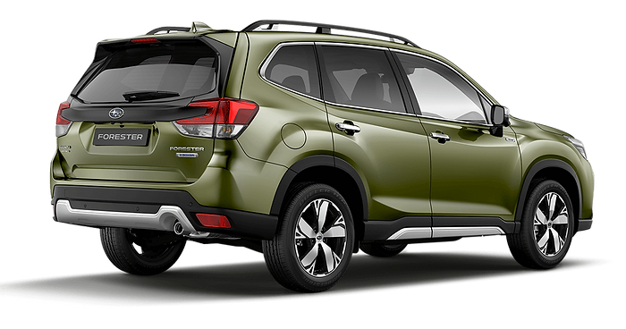 Forester-2 (2) (1).png