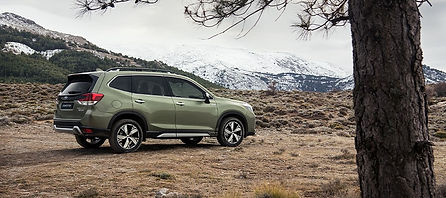 forester-eboxer-offer