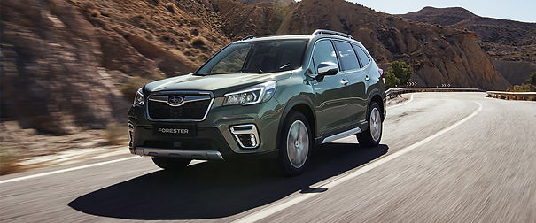 forester-eboxer-2