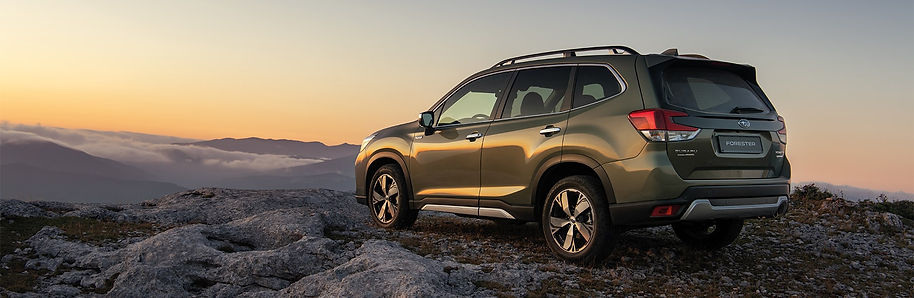 forester-eboxer-1