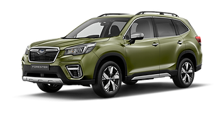 Forester (2) (1).png