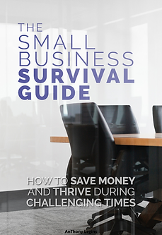 Small Business Survival Guide - cover.png