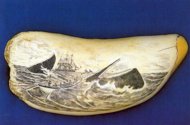Scrimshaw, a arte dos baleeiros