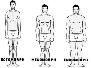 Gibt es unterschiedliche Körpertypen?