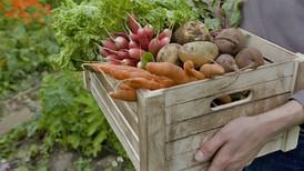 Low-Carb Rezept: Süßkartoffel-Gemüse-Auflauf