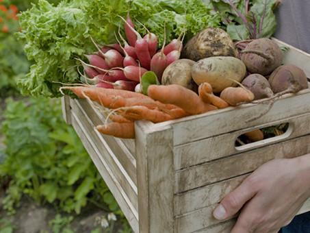 Trendspotting: Farm to table