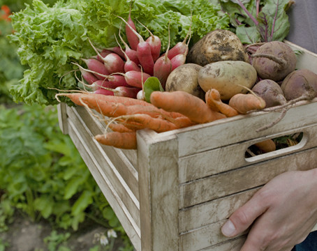 De voordelen van het eten van seizoensgroenten