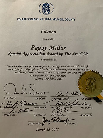 Anne Arundel County Council_edited.jpg