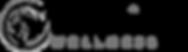 Wellsprings Wellness Logo Black & Grey.png