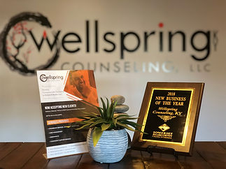 Wellsprings Wellness Business of the Year