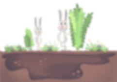 Rabbits1_edited.jpg
