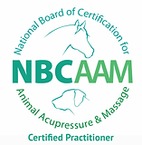 nbcaam_LOGO_CMYK_hiRes CP.png