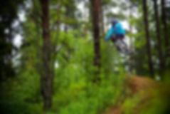 Freeride Mtb Mountainbike Slopestyle Nature