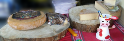 fromages-souches