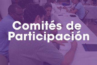 Comités de Participación