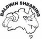 Baldwin Shearing.png