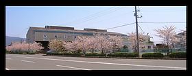 外周100mの桜並木