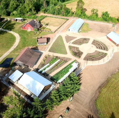 Camp Tamarack - Farber Farm