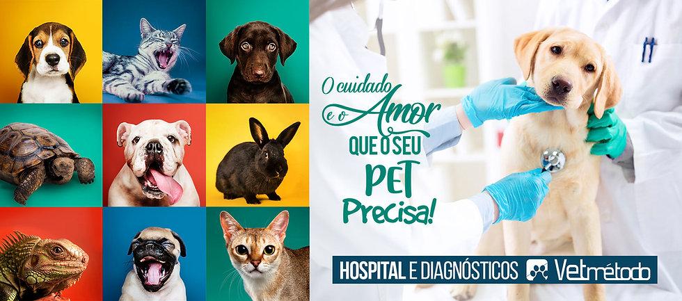 home-vetmetodo-hospital-diagnosticos-vet