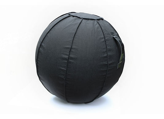 Balance Ball MAIN White Background W.jpg