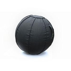 Balance Ball MAIN White Background W sma
