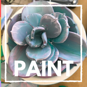 Paint Bubbalux