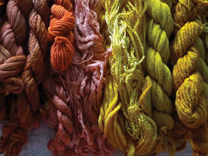 The Colours of Nature: Dye Plants and Design