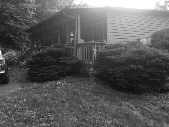 Otter House NE - Before