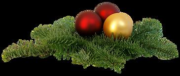 christmas-branch-png-transparent-image-p