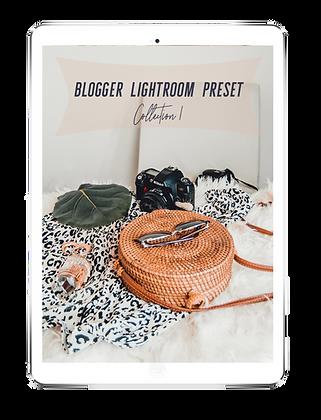 Blogger Lightroom Preset Col 1. BLOOM