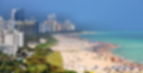 Miami background photo.png